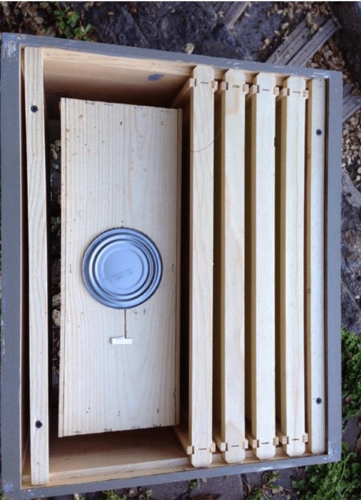 instalando un paquete de abejas