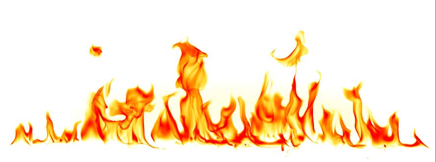 fuego colmenas