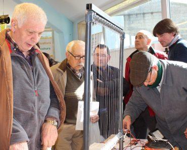 Arpa eléctrica: La trampa contra la Velutina