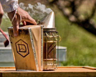 El Ahumador para abejas: Como encenderlo y utilizarlo