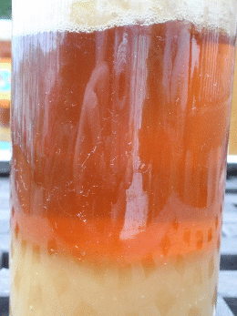 La imagen tiene un atributo ALT vacío; su nombre de archivo es miel-fermentada.png