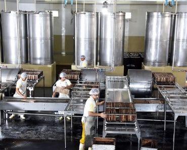 Las líneas de extracción de miel: Tipos, configuraciones…